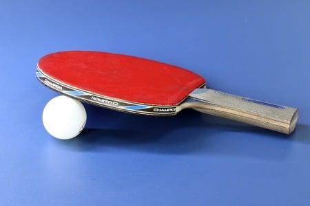 Comment choisir le bois pour le tennis de table?