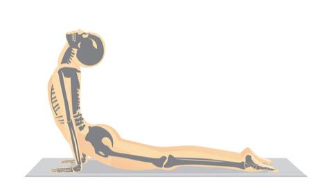 Comment se dégourdir le dos après le sport?